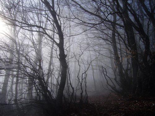 Nella nebbia – G. Pascoli