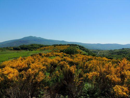Il Monte Amiata tra Siena e Grosseto