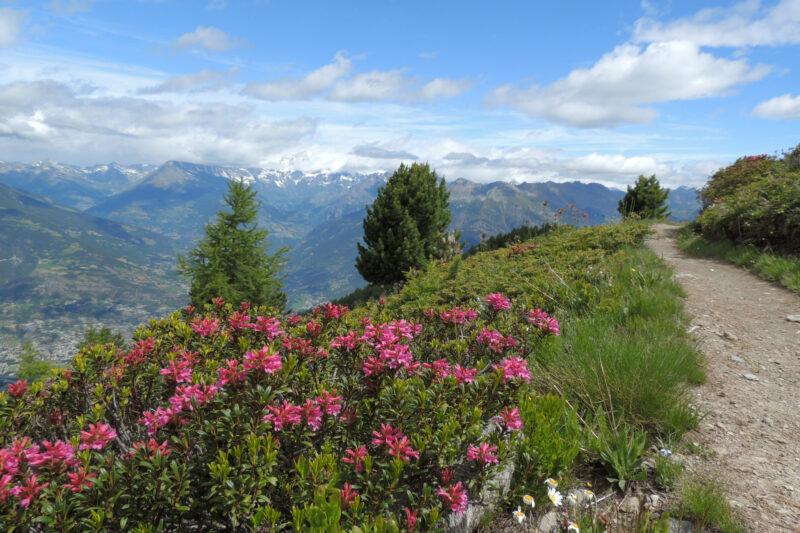 Lago di Chamolè nella conca di Pila sopra Aosta