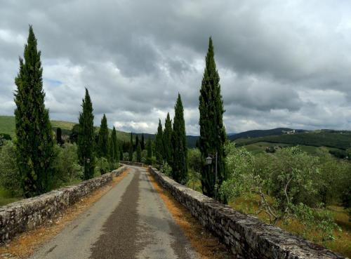 Gaiole in Chianti - Meleto