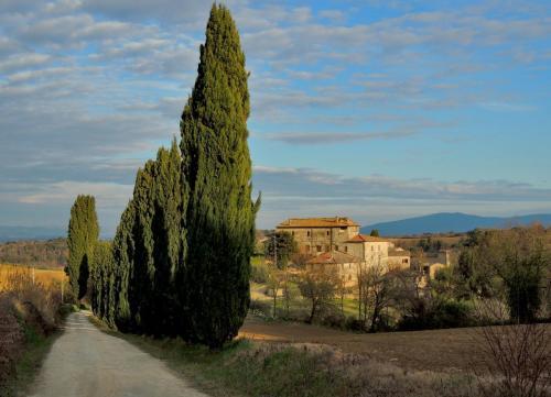 Montegabbro
