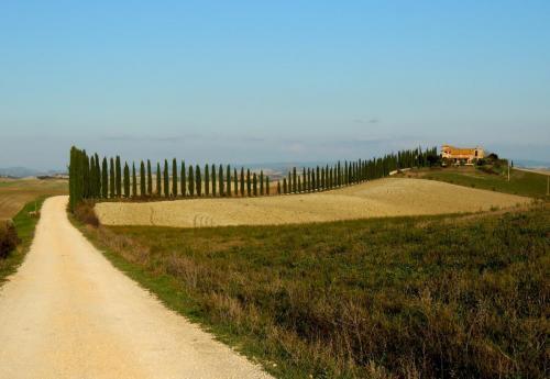 Monteroni d'Arbia - Radi