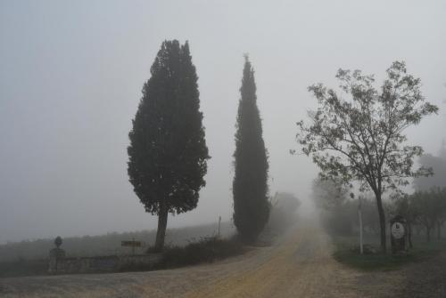 Poggibonsi - San Fabiano